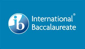 The Complete IB Extended Essay Guide: Examples, Topics
